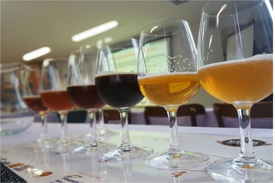 Senac/CE abre inscrições para a 3ª turma do curso de Beer Sommelier